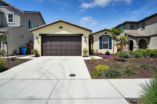 542 Cadiz Dr, Hollister, CA 95023 (#ML81844141) :: Live Play Silicon Valley