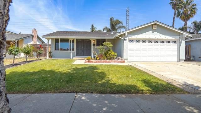 3002 Plumstead Way, San Jose, CA 95148 (#ML81844734) :: Real Estate Experts