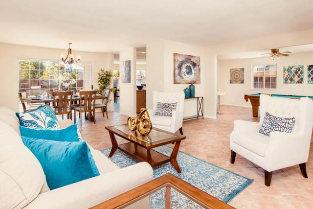 19148 Loree Ave, Cupertino, CA 95014 (#ML81845455) :: Real Estate Experts