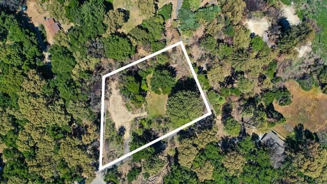 531 Summit Dr, Santa Cruz, CA 95060 (#ML81846338) :: Real Estate Experts