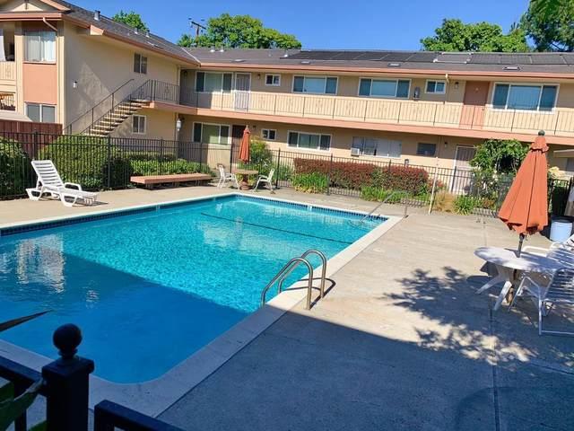 1359 Phelps Ave 10, San Jose, CA 95117 (#ML81846674) :: Real Estate Experts