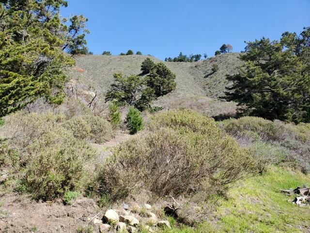 0 Highway1, Carmel, CA 93923 (#ML81846797) :: The Kulda Real Estate Group