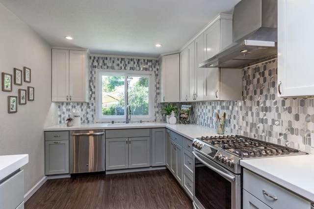 542 Clifton Ave, San Jose, CA 95128 (#ML81847231) :: Paymon Real Estate Group