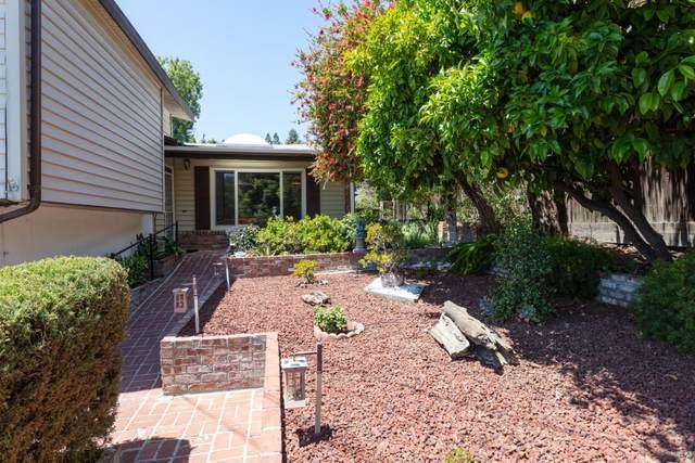 126 Fairbanks Ave, San Carlos, CA 94070 (#ML81847322) :: The Sean Cooper Real Estate Group