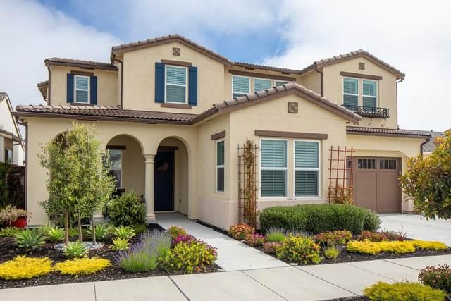 479 Palisade Dr, Marina, CA 93933 (#ML81847861) :: The Sean Cooper Real Estate Group