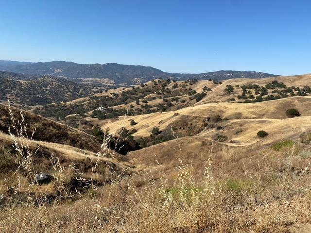 Lot 26 Panoche Rd, Paicines, CA 95043 (#ML81848123) :: Robert Balina   Synergize Realty