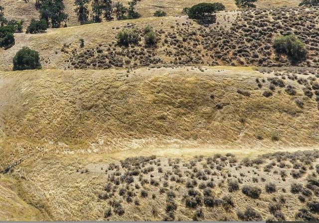 Lot 58 Panoche Rd, Paicines, CA 95043 (#ML81848124) :: Strock Real Estate