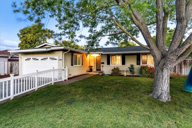 1484 Jeffery Ave, San Jose, CA 95118 (#ML81848139) :: Real Estate Experts