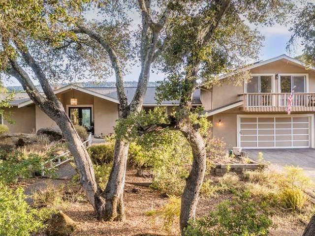 8855 El Matador Dr, Gilroy, CA 95020 (#ML81848556) :: The Sean Cooper Real Estate Group