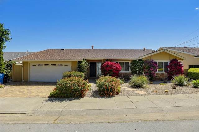 4221 Wooster Ave, San Mateo, CA 94403 (#ML81848704) :: The Sean Cooper Real Estate Group