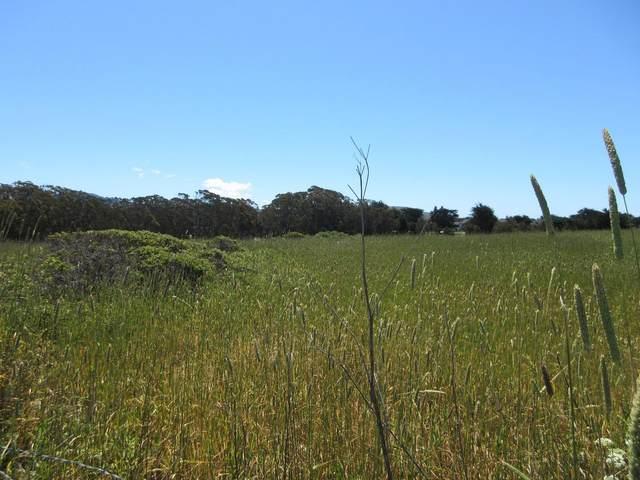 0 Redondo, Half Moon Bay, CA 94019 (#ML81848838) :: Strock Real Estate