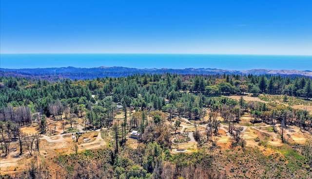 220 Braemoor Dr, Santa Cruz, CA 95060 (#ML81848878) :: Paymon Real Estate Group