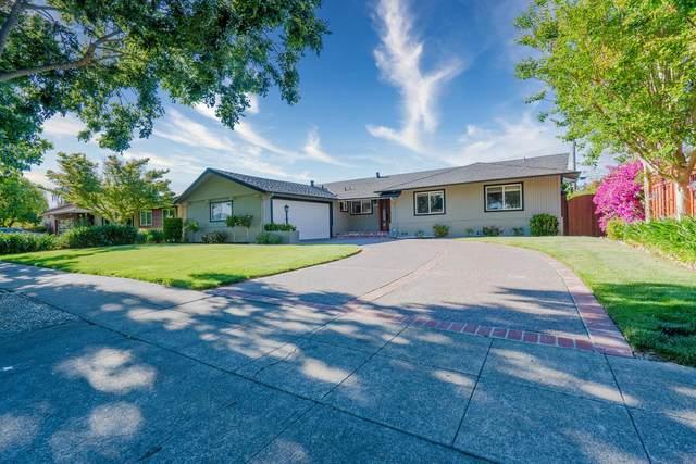 3519 Walton Way, San Jose, CA 95117 (#ML81848893) :: Strock Real Estate