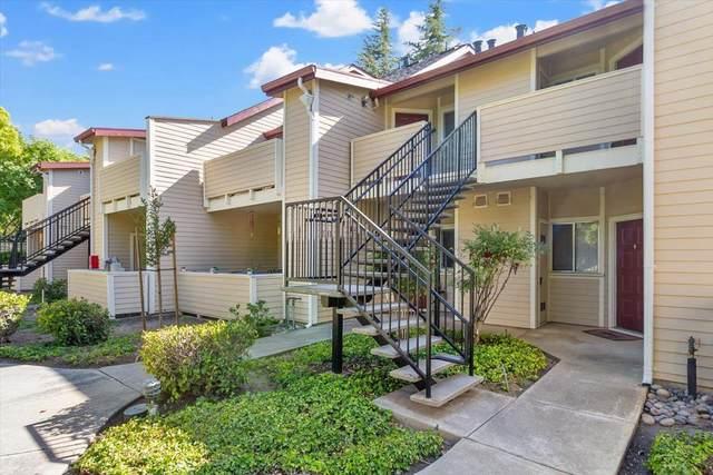 1142 Cedar Gables Dr, San Jose, CA 95118 (#ML81848955) :: Real Estate Experts