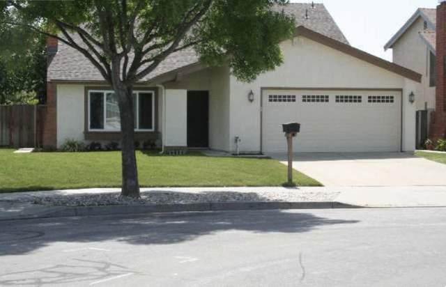 6222 Rubicon Ave, Newark, CA 94560 (#ML81849075) :: Strock Real Estate