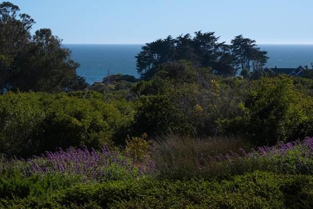 163 Crest Dr, La Selva Beach, CA 95076 (#ML81849172) :: Paymon Real Estate Group
