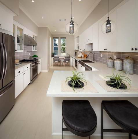325 Scarlett Ter, Mountain View, CA 94043 (#ML81849359) :: Schneider Estates