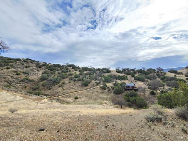 0 Willow Springs Rnch, Paicines, CA 95043 (#ML81849412) :: Strock Real Estate