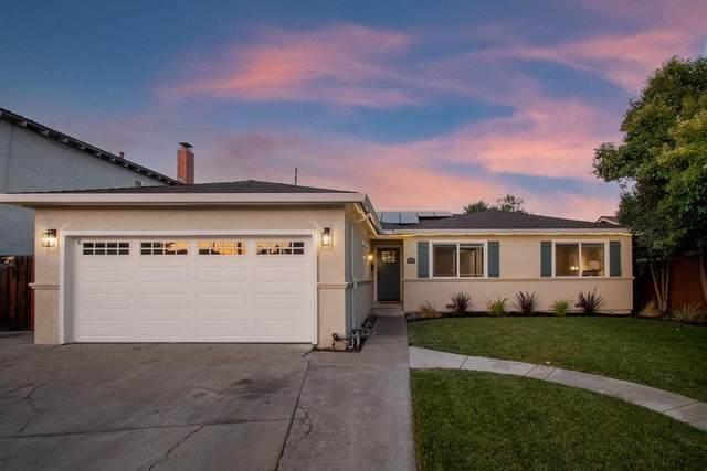 5874 Chris Dr, San Jose, CA 95123 (#ML81849438) :: Paymon Real Estate Group