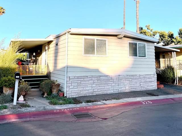 510 Saddle Brook Dr 320, San Jose, CA 95136 (#ML81849520) :: Paymon Real Estate Group