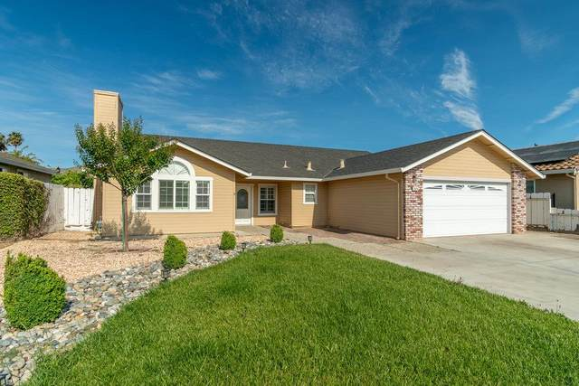 2070 Clearview Dr, Hollister, CA 95023 (#ML81849528) :: Schneider Estates