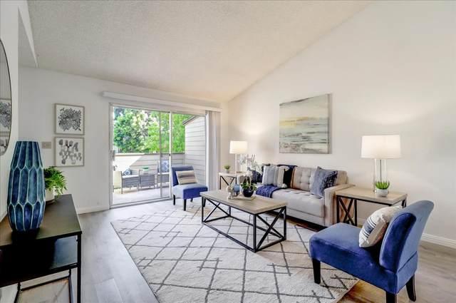 732 Sterling Dr, San Leandro, CA 94578 (#ML81849605) :: Strock Real Estate