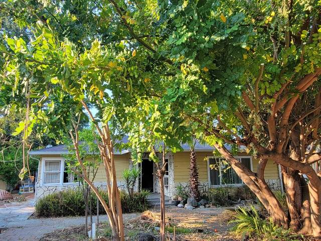229 Budd Ave, Campbell, CA 95008 (#ML81849796) :: RE/MAX Gold