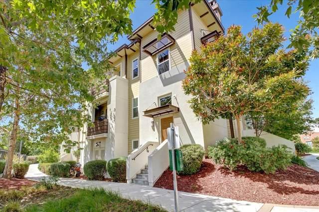 471 Hansen Dr, San Mateo, CA 94403 (#ML81849825) :: Paymon Real Estate Group