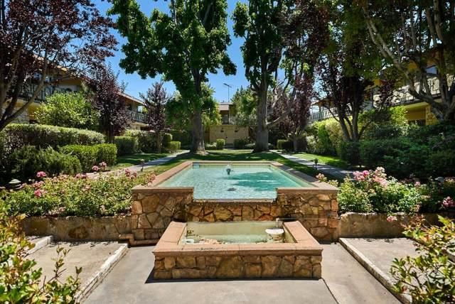 762 University Ave, Palo Alto, CA 94301 (#ML81849867) :: Strock Real Estate