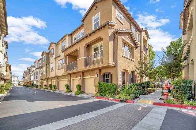 642 Cedarville Ln, San Jose, CA 95133 (#ML81850418) :: The Realty Society