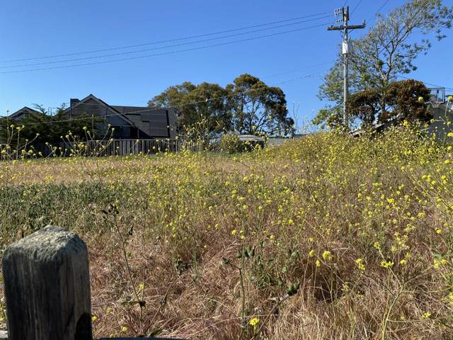 0 Mesa Way, Watsonville, CA 95076 (#ML81851800) :: Schneider Estates