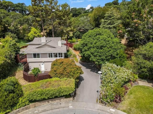 16 Flamingo Ln, San Rafael, CA 94901 (#ML81852403) :: The Kulda Real Estate Group
