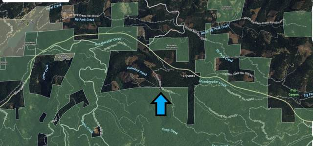 0 10N59 Snow Mill Rd, Pollock Pines, CA 95726 (#ML81853152) :: Intero Real Estate