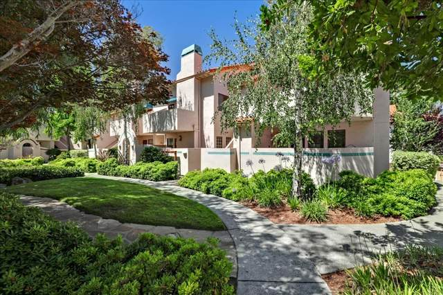 10240 Nile Dr, Cupertino, CA 95014 (#ML81853346) :: Real Estate Experts