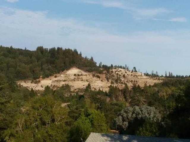 270 Moon Meadow Ln, Felton, CA 95018 (#ML81854800) :: The Kulda Real Estate Group