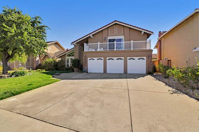 763 Salt Lake Dr, San Jose, CA 95133 (#ML81855225) :: Robert Balina   Synergize Realty