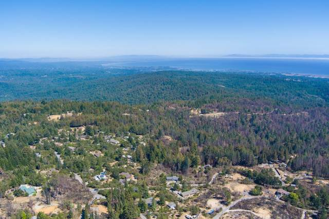 12 Pine Hill Dr, Santa Cruz, CA 95060 (#ML81856141) :: The Sean Cooper Real Estate Group