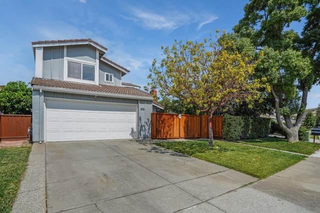 31 S Terrace Ct, San Jose, CA 95138 (#ML81856204) :: Real Estate Experts