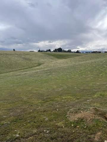 0000 Arburua Rd, Los Banos, CA 93635 (#ML81856294) :: Strock Real Estate