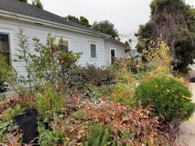 311 California Ave, Santa Cruz, CA 95060 (#ML81856726) :: The Gilmartin Group