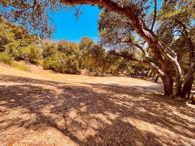 34160 Robinson Canyon Rd, Carmel, CA 93923 (#ML81856782) :: RE/MAX Gold