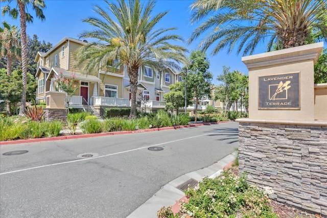 2859 Lavender Ter, San Jose, CA 95111 (#ML81858080) :: Live Play Silicon Valley