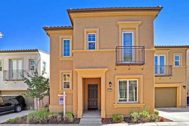 1345 Bayberry View Ln, San Ramon, CA 94582 (#ML81859530) :: Real Estate Experts