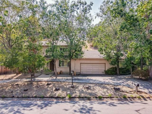 1245 Tartan Trail Rd, Hillsborough, CA 94010 (#ML81859724) :: Strock Real Estate