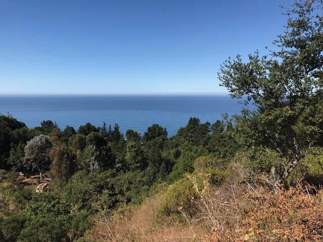 19 Gorda Mountain Rd, Big Sur, CA 93920 (#ML81860689) :: Alex Brant