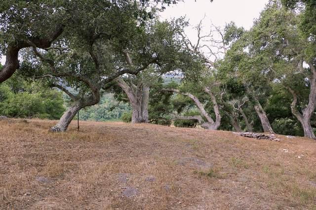 9 Red Tail Trce, Carmel, CA 93923 (#ML81862594) :: Alex Brant