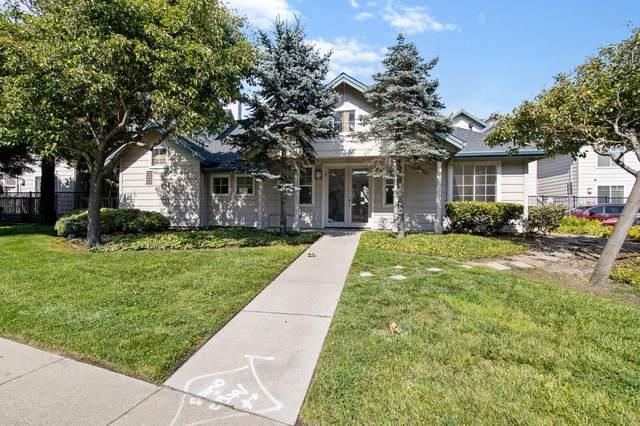 1400 El Camino Real 210, South San Francisco, CA 94080 (#ML81862827) :: Strock Real Estate