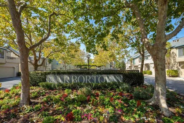 1164 Shoreline Dr, San Mateo, CA 94404 (#ML81863005) :: Strock Real Estate