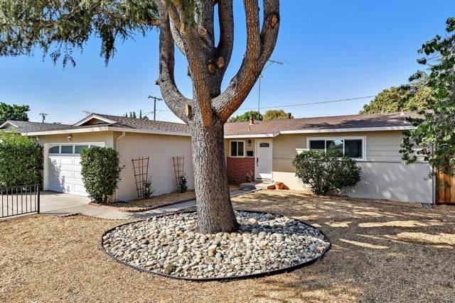 1151 Boise Dr, Campbell, CA 95008 (#ML81863121) :: The Goss Real Estate Group, Keller Williams Bay Area Estates