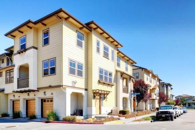 1096 Pepper Rd, San Jose, CA 95133 (#ML81863209) :: Strock Real Estate